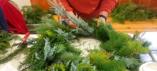 Making a wreath out of evergreen boughs