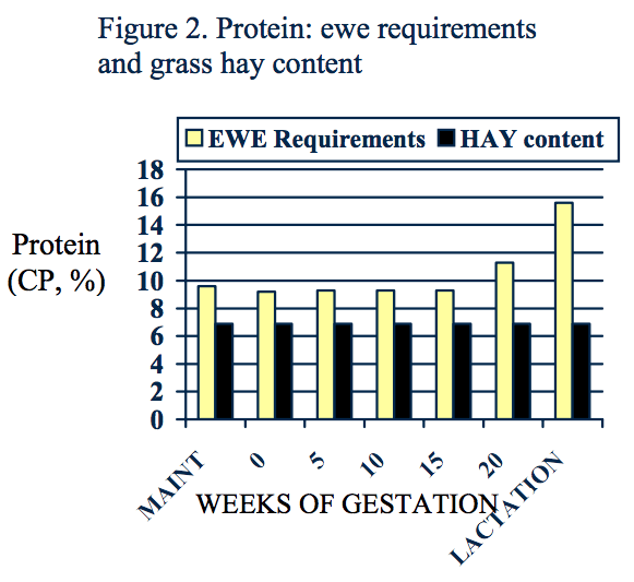 Ewe protein requirements increase during lactation to nearly 16 CP, while the protein content of grass hay stays constant at around 7%.