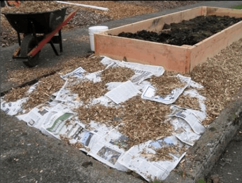 Wood chips on top of newspaper