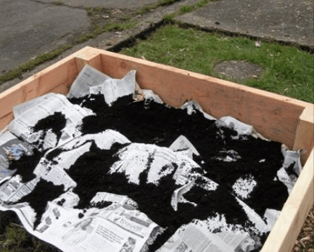 Manure on top of newspaper