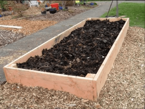 Sheet mulch inside a raised bed