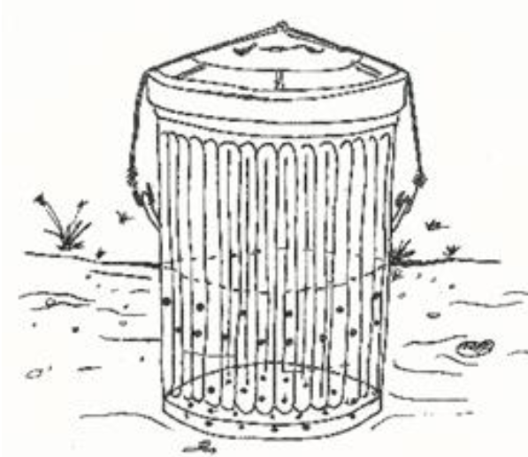 Trench Composting With Kitchen Scraps: Choosing And Using A Composting System