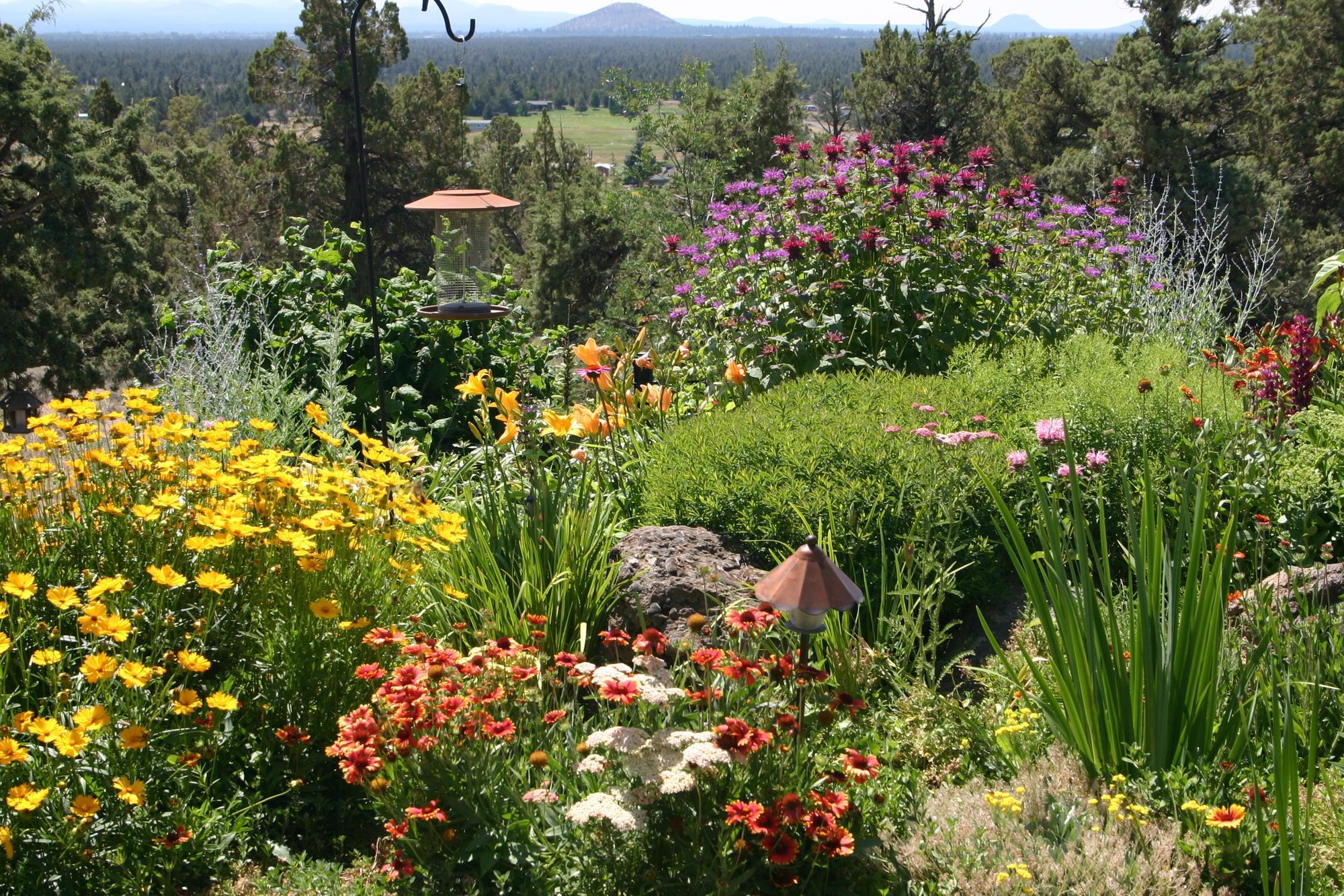 High Desert Gardening Newsletter