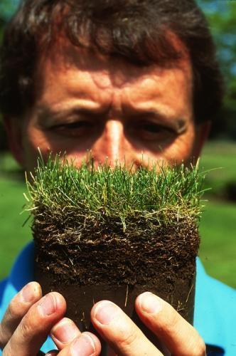 Person holding a portion of turf