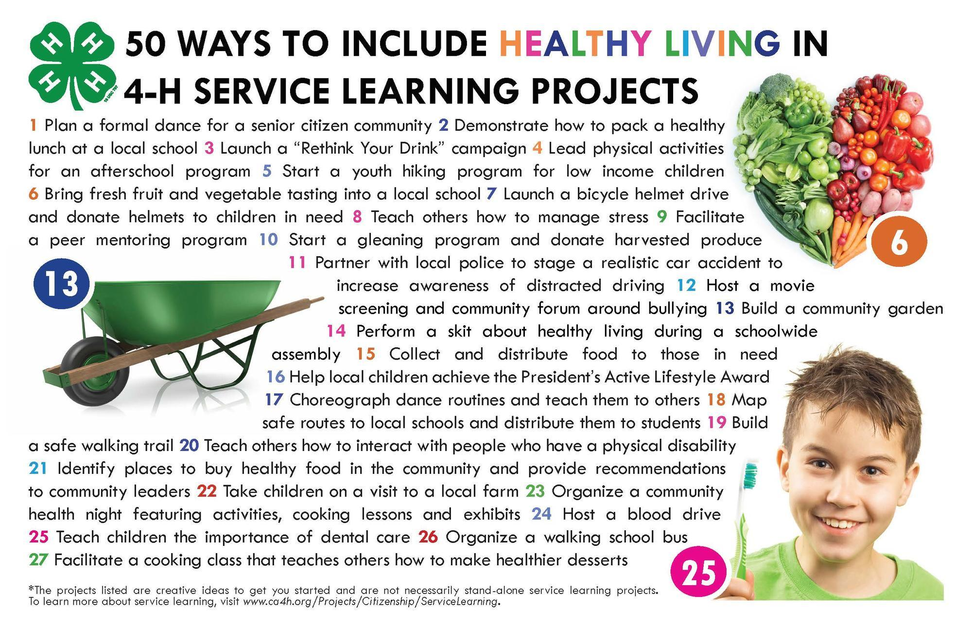 Healthy Living Service Projects