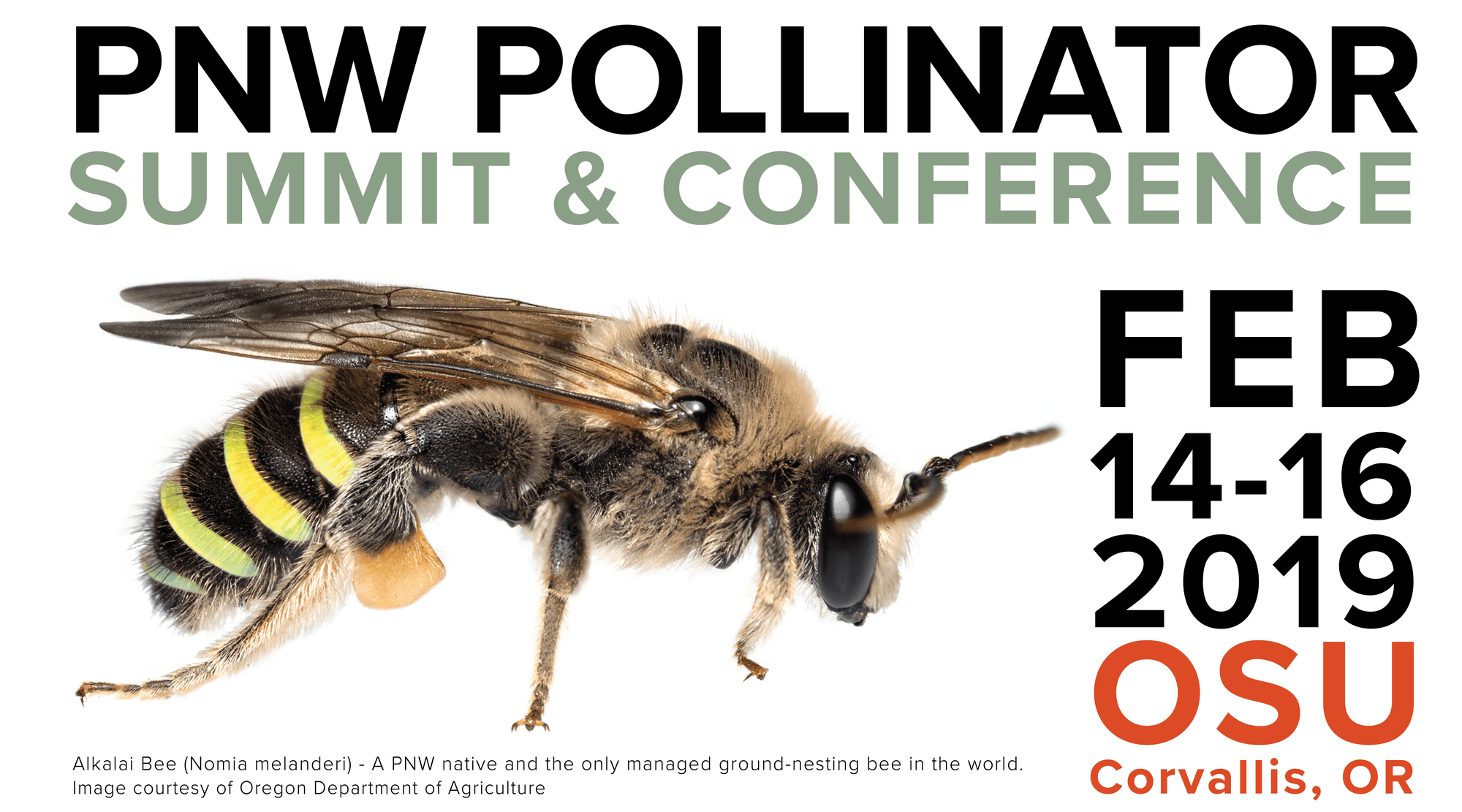PNW Pollinator Summit & Conference. Feb 14-16 2019. Corvallis, OR