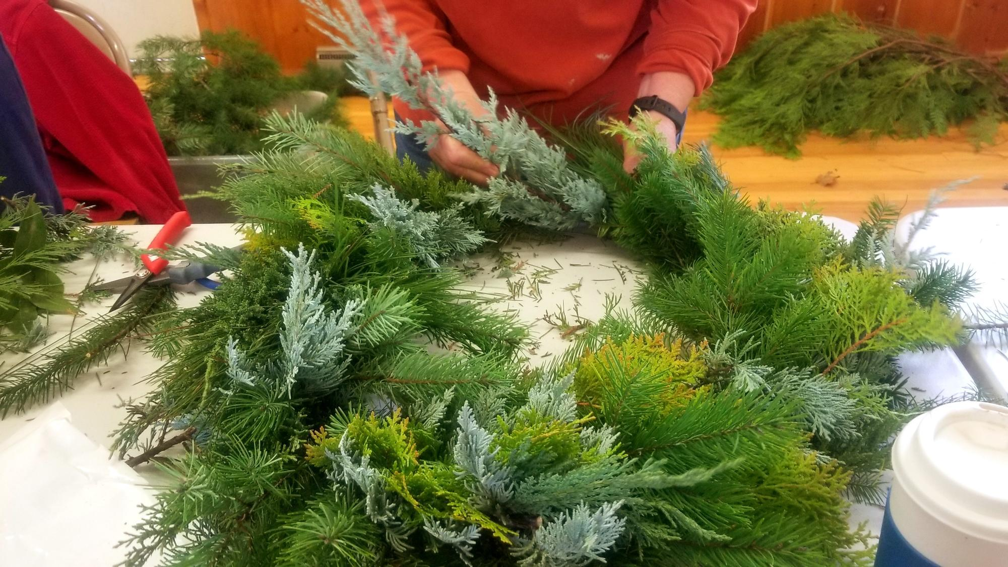 Harvesting Evergreen Boughs From Your Woodland Osu Extension Service