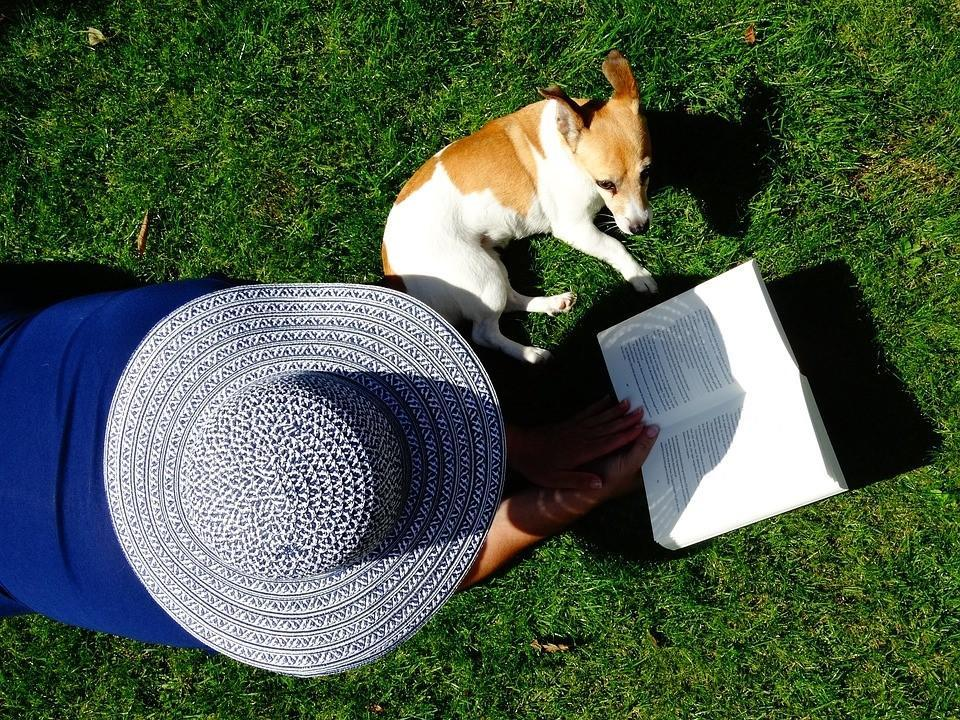 view from above of person in hat on lawn reading with a dog