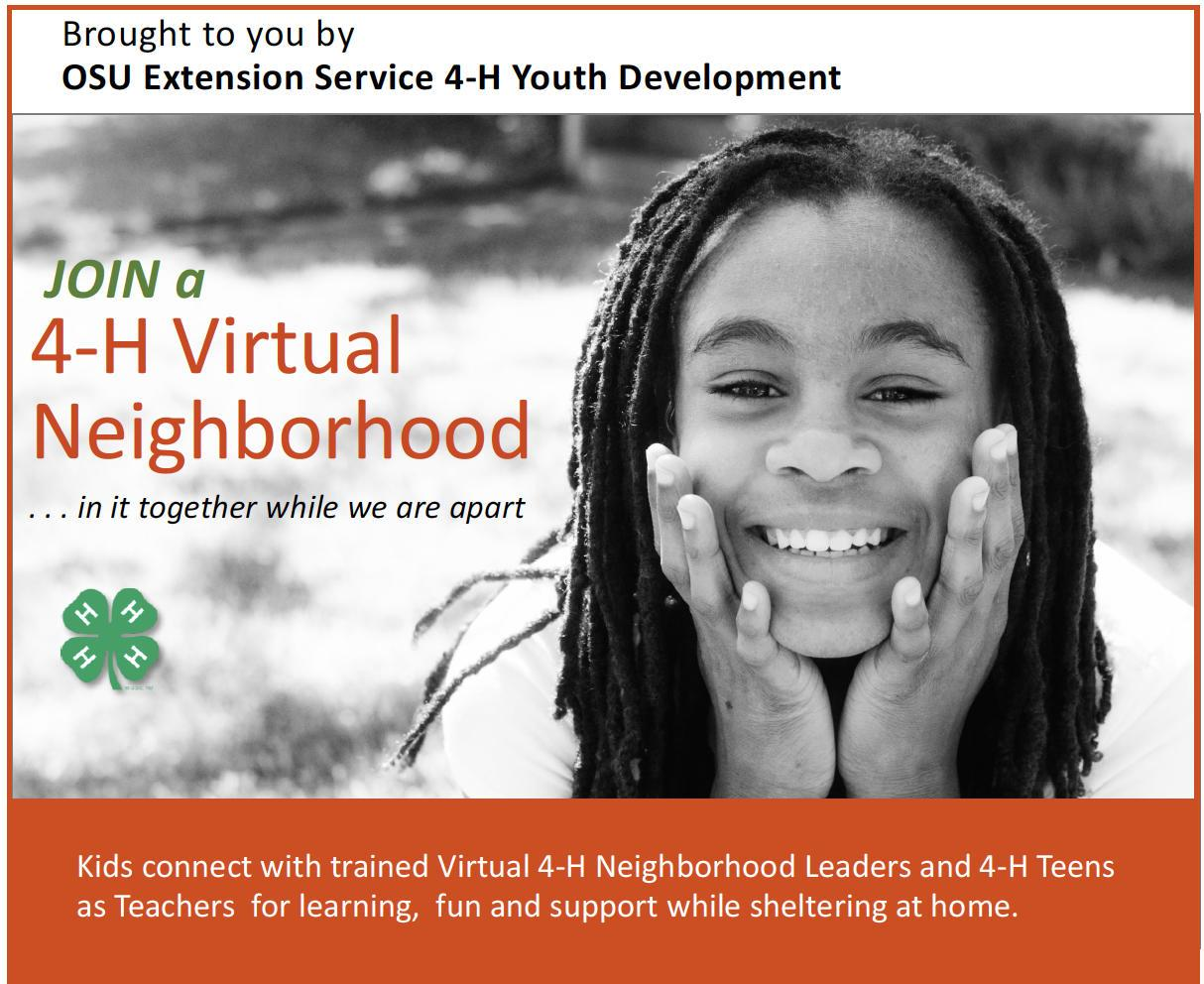 Join a 4-H Virtual Neighborhood ... in it together while we area apart. Kids connect with trained Virtual 4-H Neighborhood Leaders and 4-H Teens as Teachers for learning, fun and support while sheltering at home. Brought to you buy OSU Extension Service 4-H Youth Development.