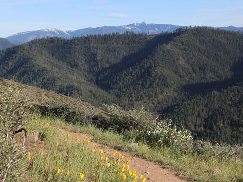 East Applegate Ridge trail