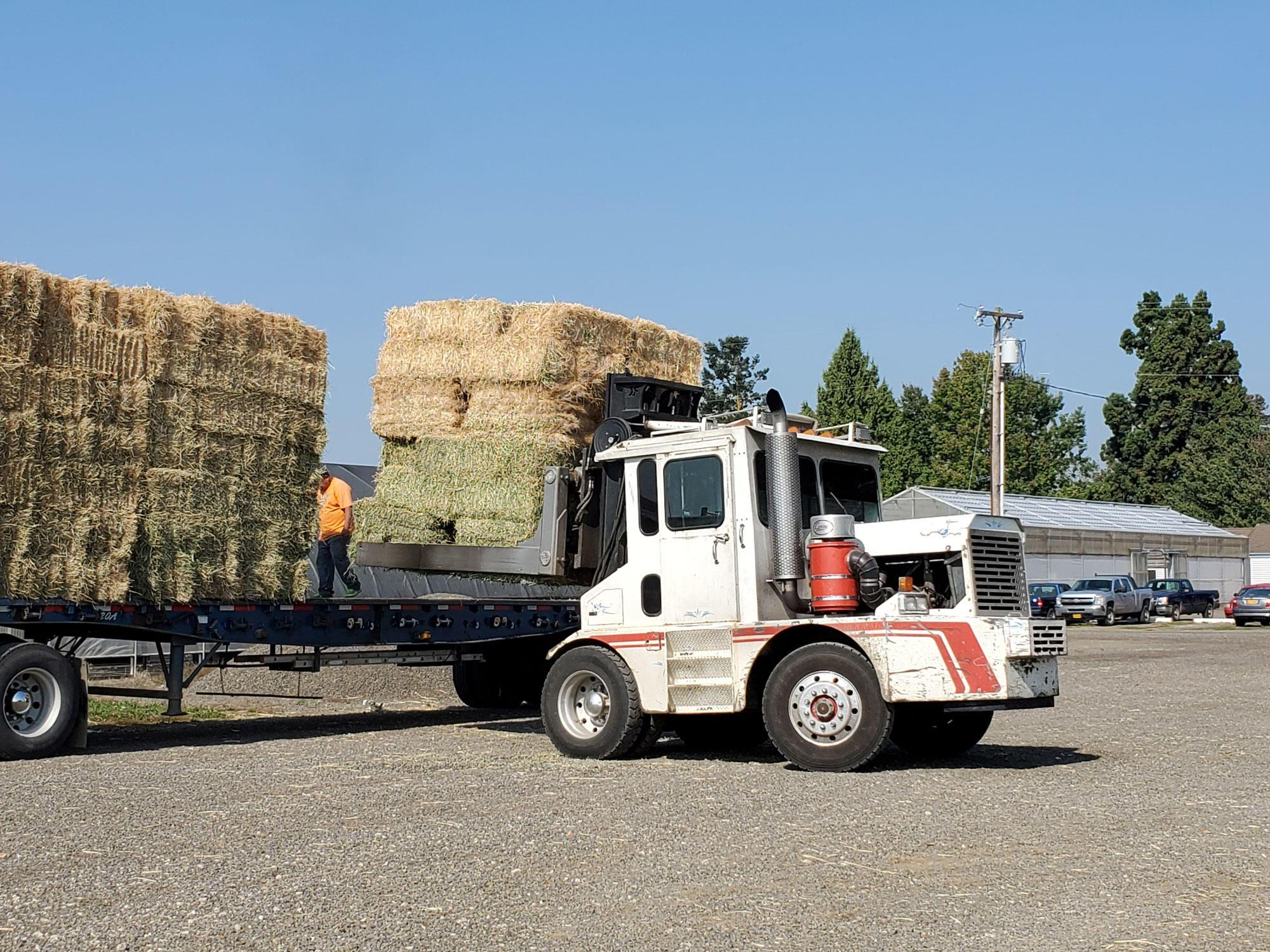 A semi truck carrying donated hay arrives at the North Willamette Research and Extension Center in Aurora.