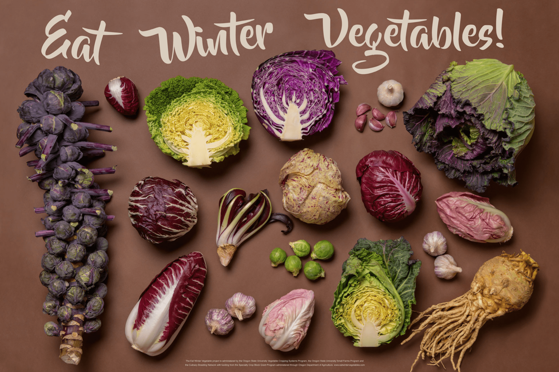 Poster of winter vegetables