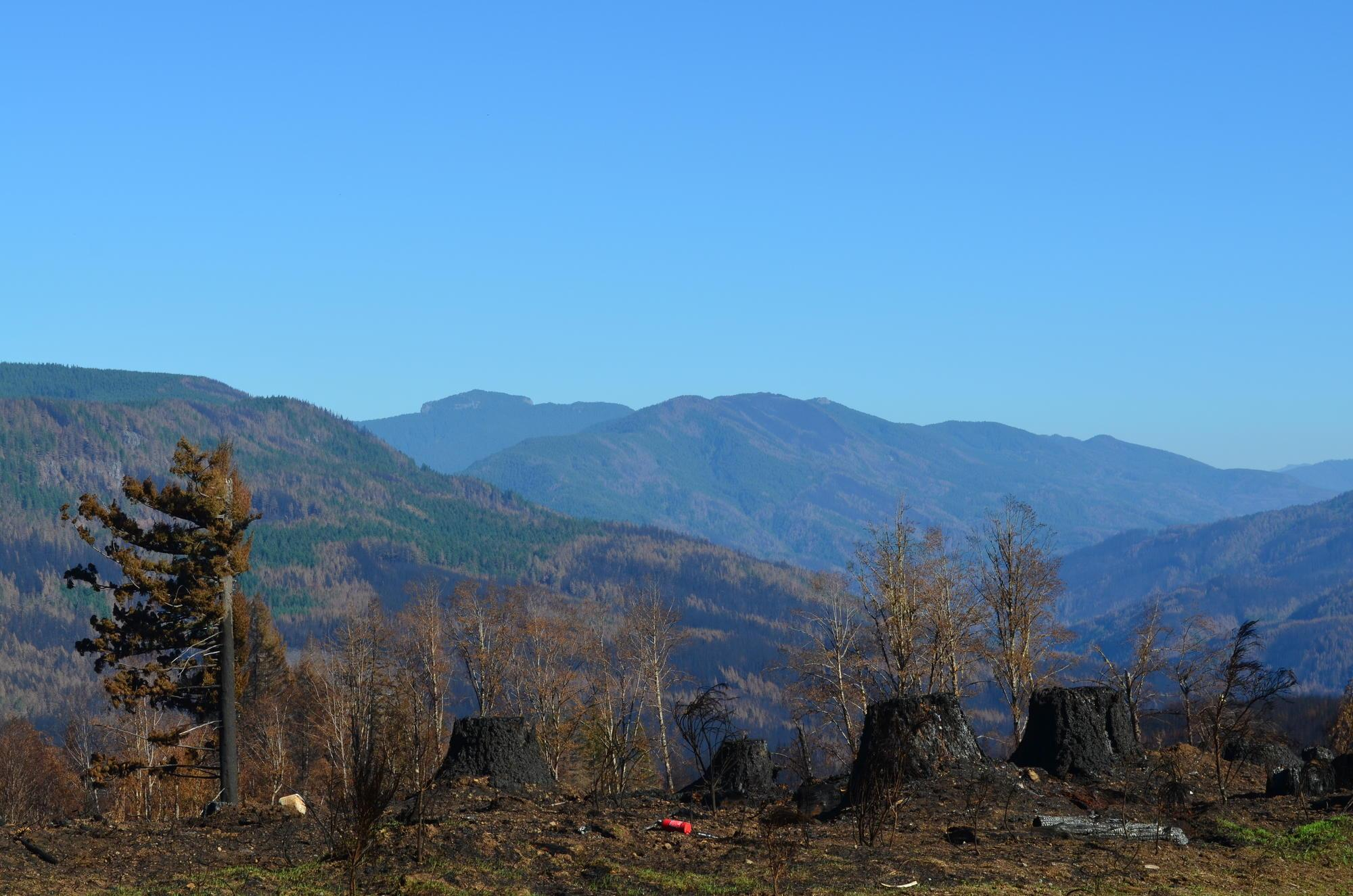 Burn scar from Beachie Creek Fire, 2020.