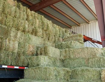 Stacks of hay in a barn