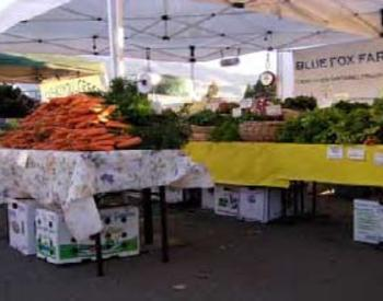 Blue Fox Farms market display filled with vegetables and other crops