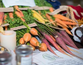 Carrots. Culinary Breeding Network 2015 Variety Showcase in Portland Oregon at Chris King Precision Components. An event held on September 28, 2015 and organized by OSU's Lane Selman. A colaboration between breeders, chefs, seed growers, farmers, produce buyers, and eaters.