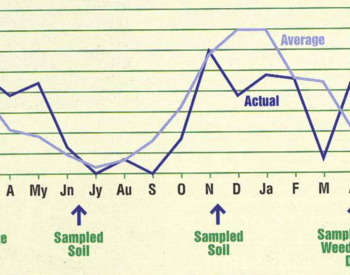 For the first 4 months, between fertilization and the first soil sample, actual rainfall was higher than average. For the remaining 9 months, actual rainfall was lower than average.