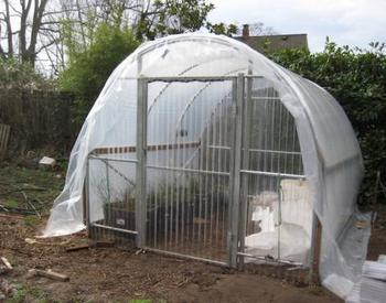 Greenhouse on soil covered in plastic