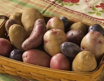 Different looking potatoes in a wooden basket