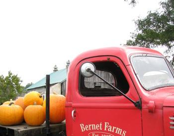 Bernet Farms truck with pumpkins on the back
