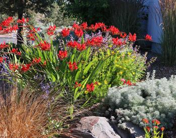 Home Garden And Landscape Osu Extension Service