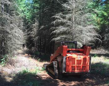 Small timber machine in the forest.