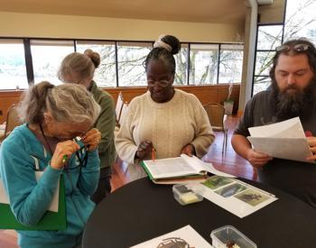 Master Gardeners learning insect ID