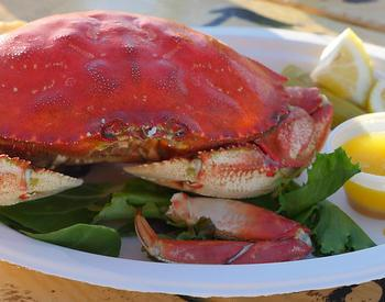 Dungeness crab dinner with melted butter and lemon
