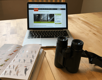 Bird Field Guide, Binoculars and Laptop on a Kitchen Table