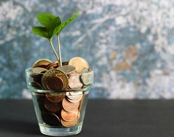 coins in a glass with seedling growing out of it