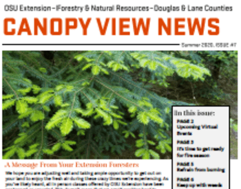 Canopy View News - Summer 2020, Issue 7