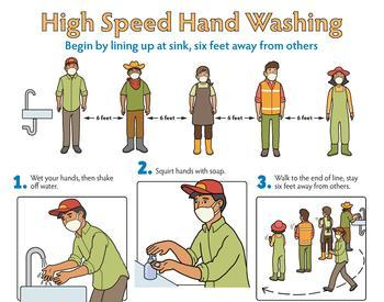 Poster showing the 6 steps of High Speed Hand Washing - English, color