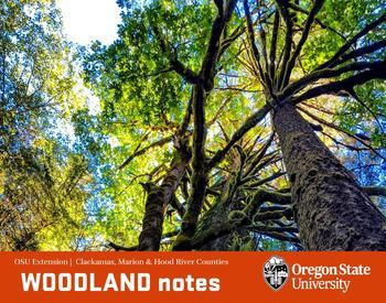 Woodland Notes quarterly forestry journal for Clackamas, Marion, and Hood River Counties