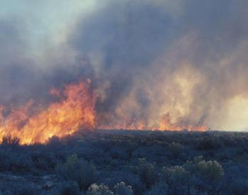 Brush fire in sagebrush