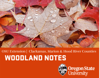 Oregon State Woodland Notes