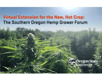 Virtual Extension for the New, Hot Crop: the Southern Oregon Hemp Growers Forum