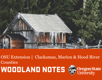 Woodland Notes Winter 2021