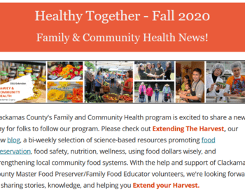 Scxreenshot of the Fall edition of Healthy Together Enews