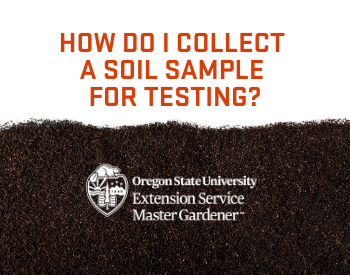 How do I collect a soil sample for testing? Image of soil.