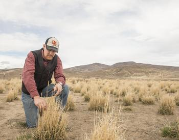 OSU researcher in eastern oregon landscape