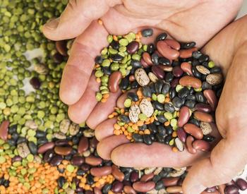 handful of dried beans, split peas, lentils