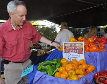 person looking at sign for organic peppers at a market