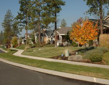 suburban neighborhood street view