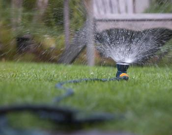 Lynn Ketchum photo of a sprinkler on a lawn