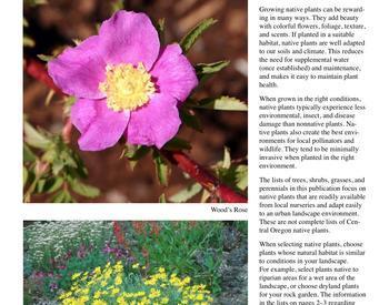Native Plant Gardening | OSU Extension Service