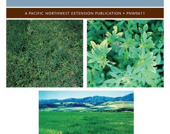 Foxtail Control in Pastures and Hayground | OSU Extension