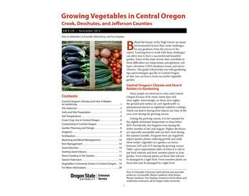 Where Is The Best Spot For My Vegetable Garden Osu Extension Service